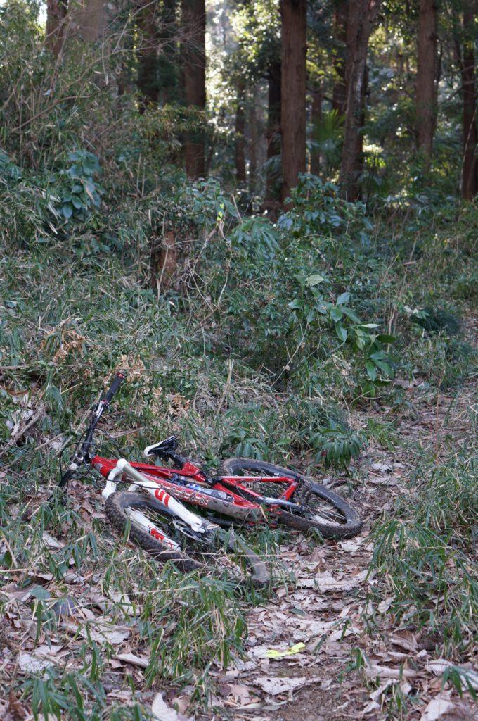 M TrailはプチDHを下りて終了