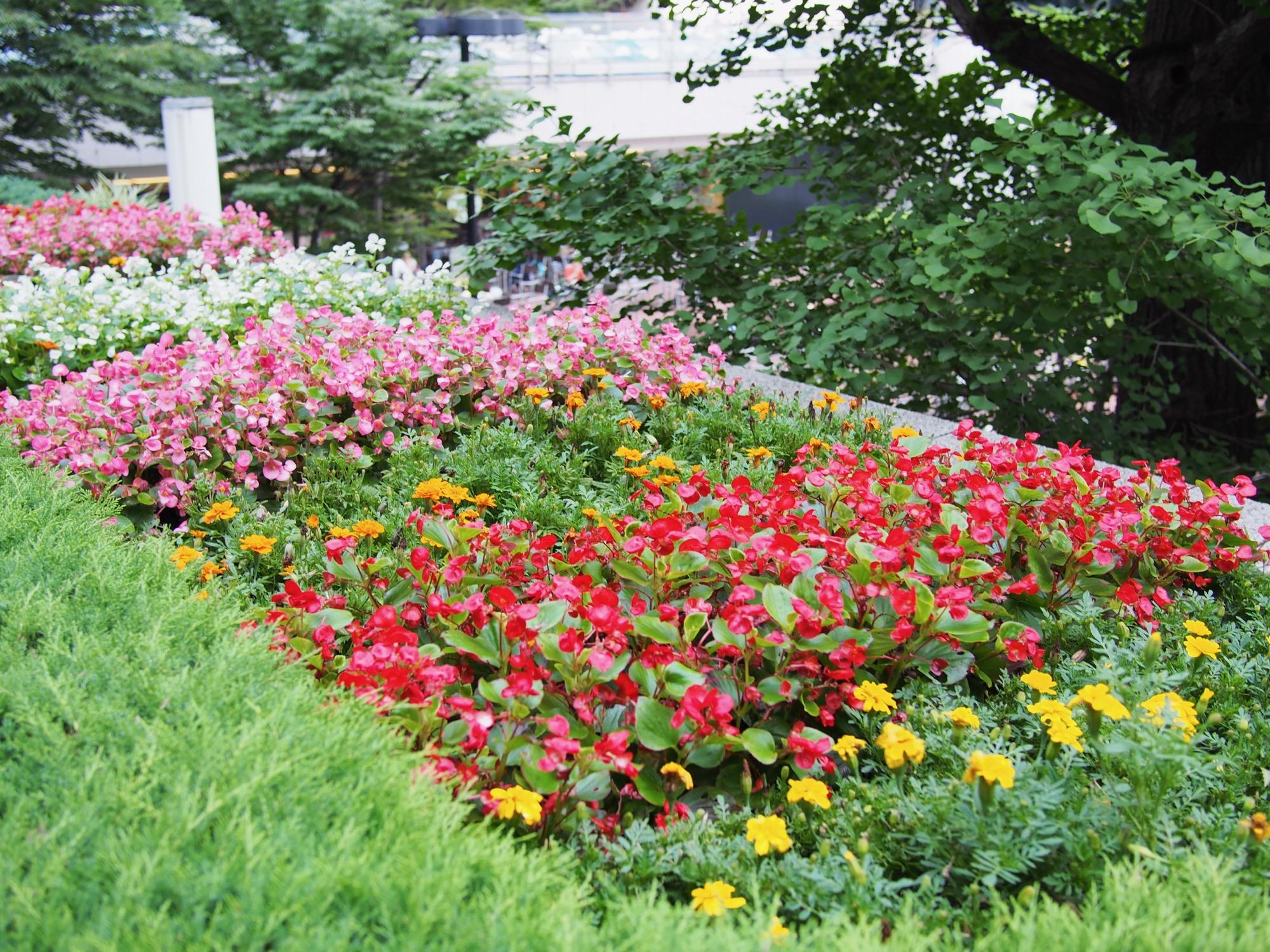 花壇もあります