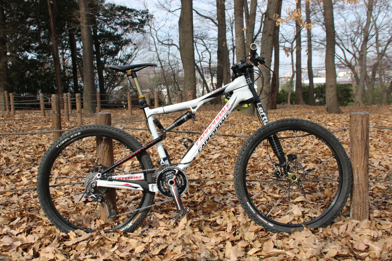 Cannondale Rize One Carbon