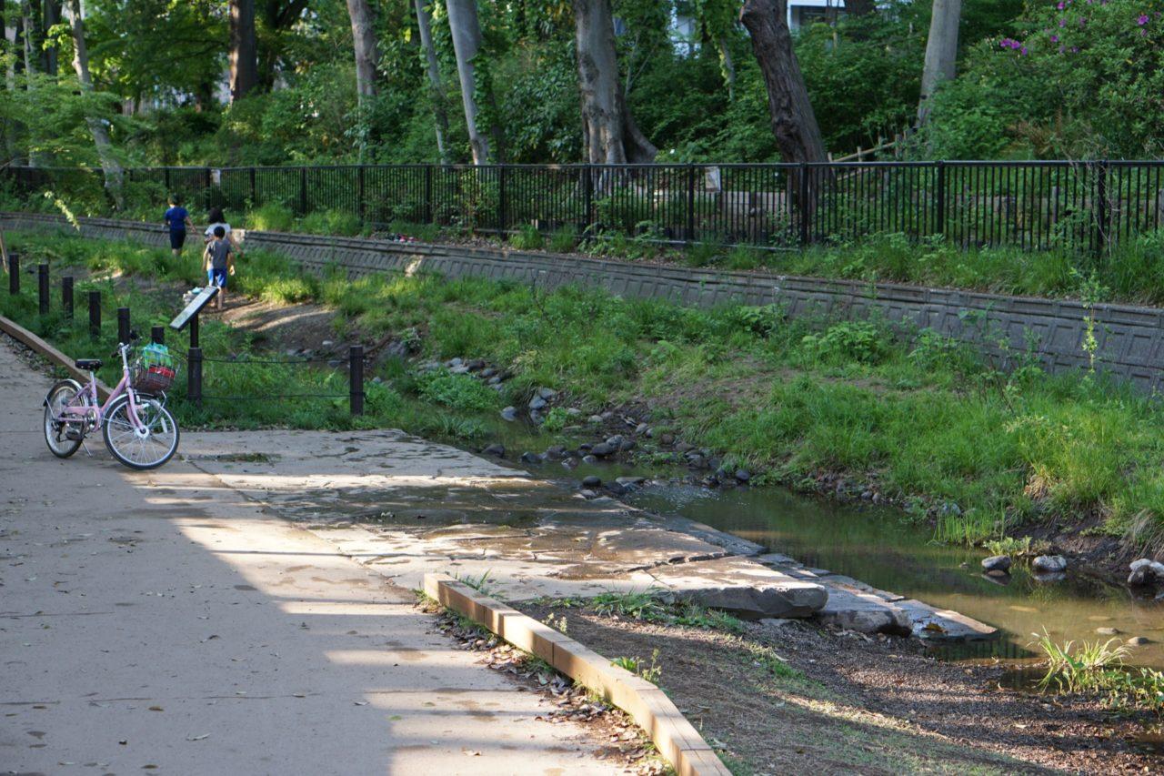 上ノ池〜下ノ池をつなぐ水路