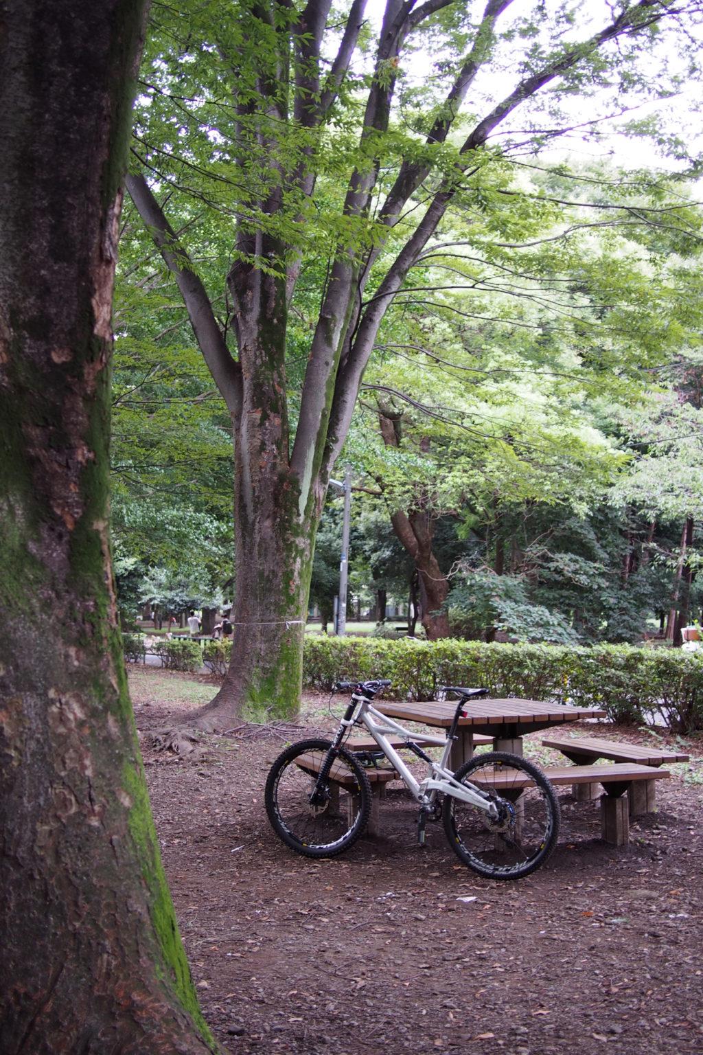 武蔵野園さん前