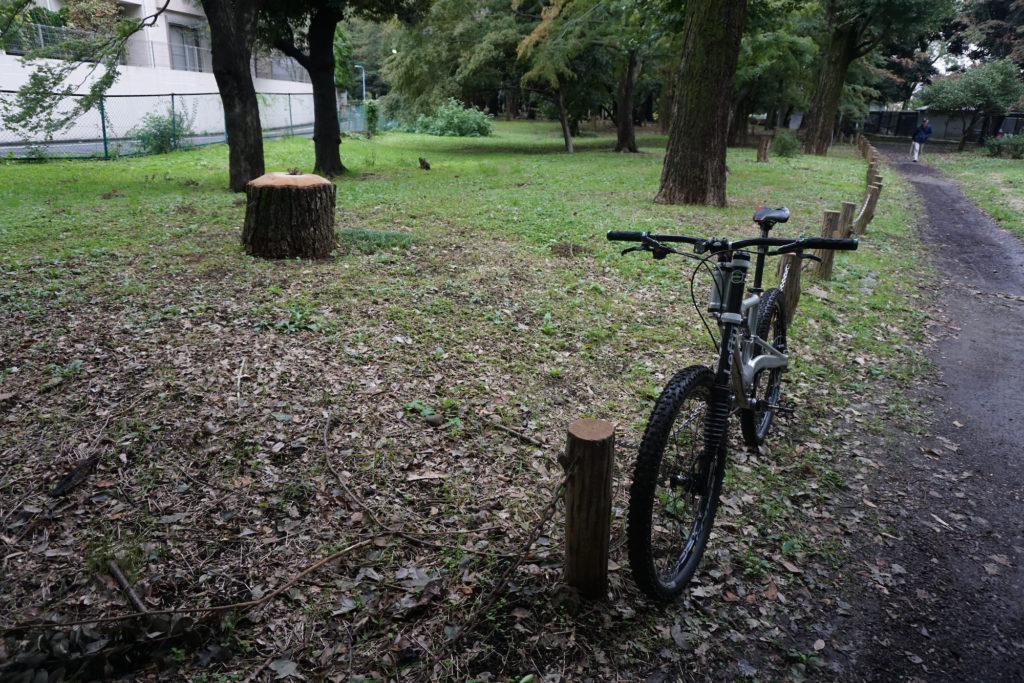 公園はすでにきれいになっていた