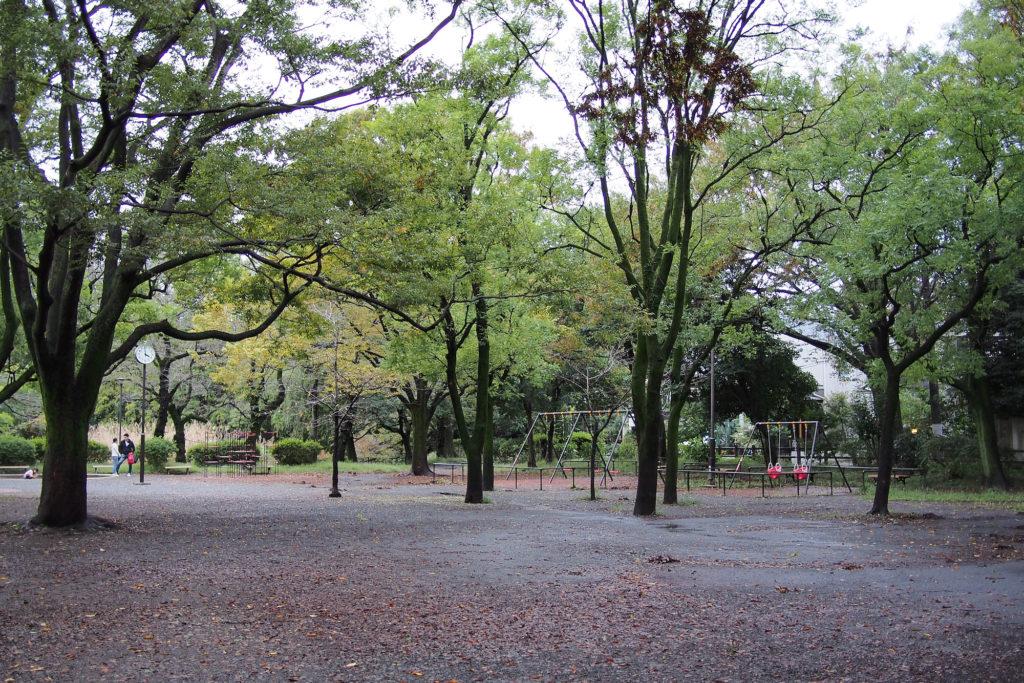 まずは善福寺公園へ。下ノ池の広場。
