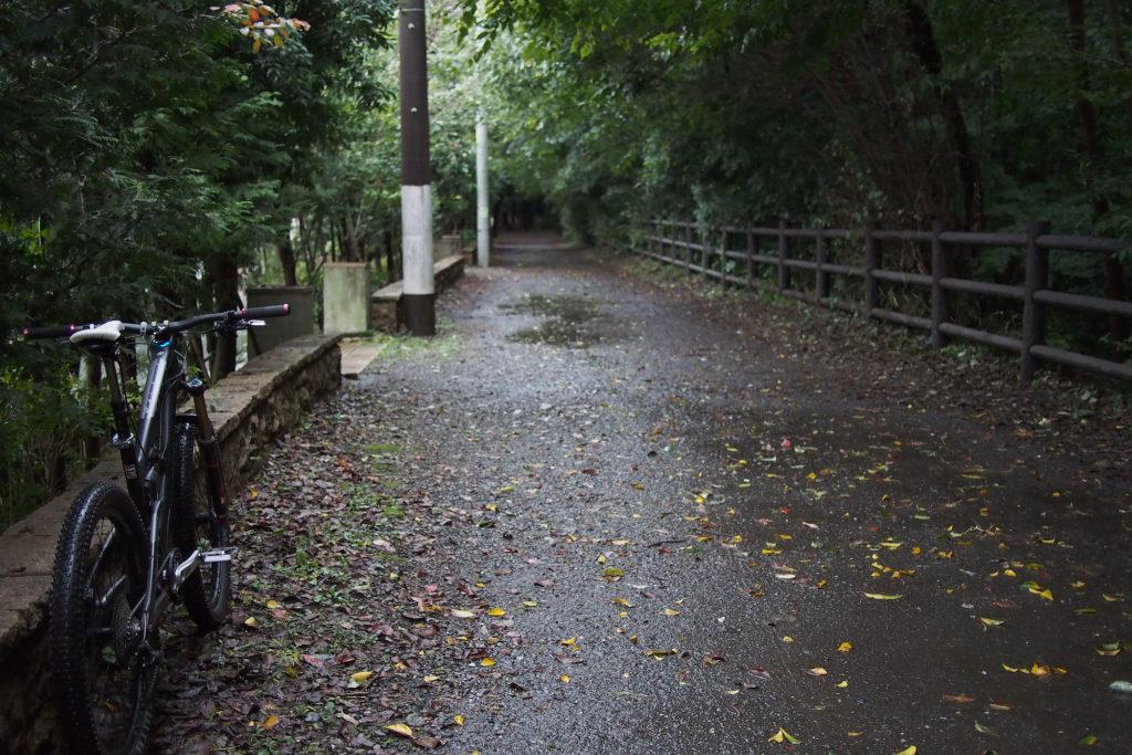 玉川上水脇の未舗装路へ