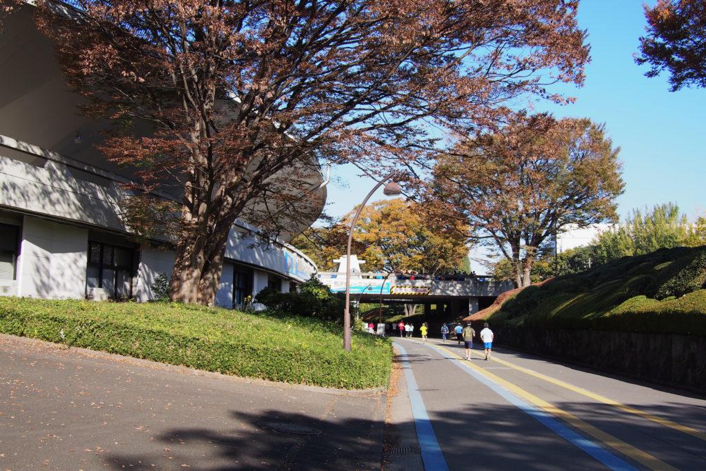 駒沢オリンピック公園の競技場