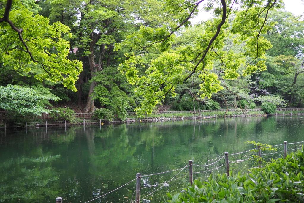 井の頭恩賜公園