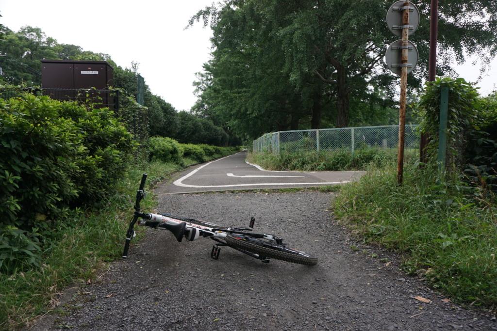 こどもサイクリングコース