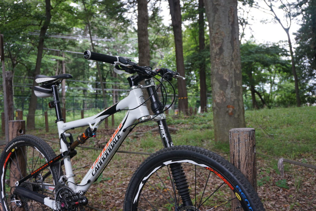 cannondale rize one