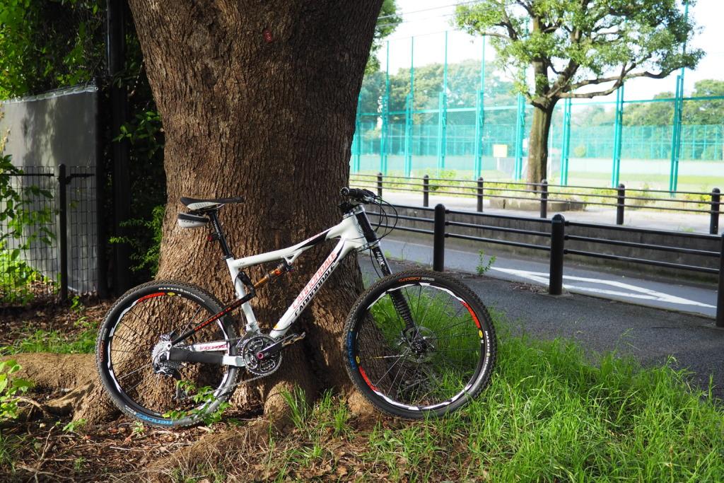 和田堀公園入口