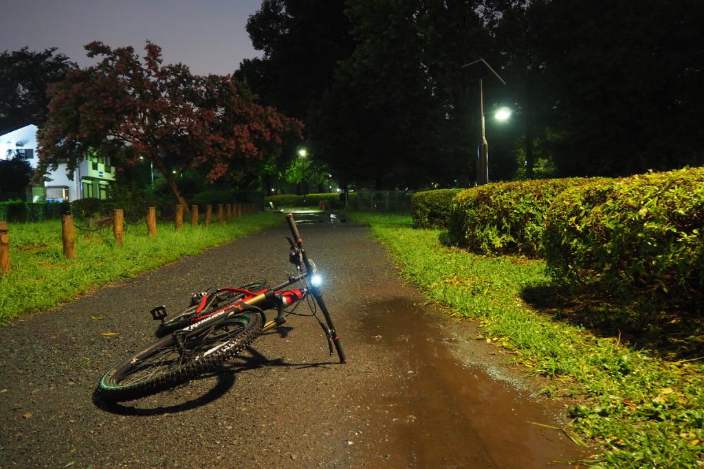 昨日は乾いていた路面