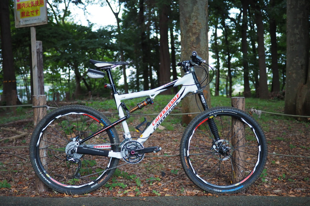 Cannondale Rize Carbon One