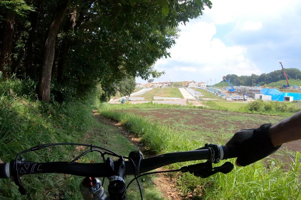 畑の横の道