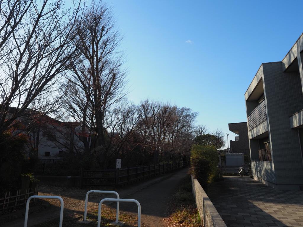 東京の裏道 入口