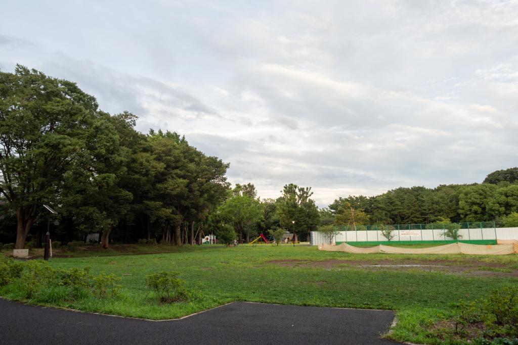 上流の公園